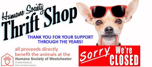 Humane Society of Westchester |